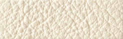 IC000201 Ivory