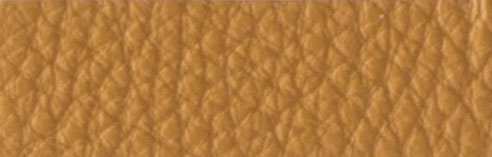 IC000218 Dune