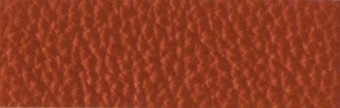 IC000299 Henna